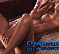 Cheapercams: Pay By Phone
